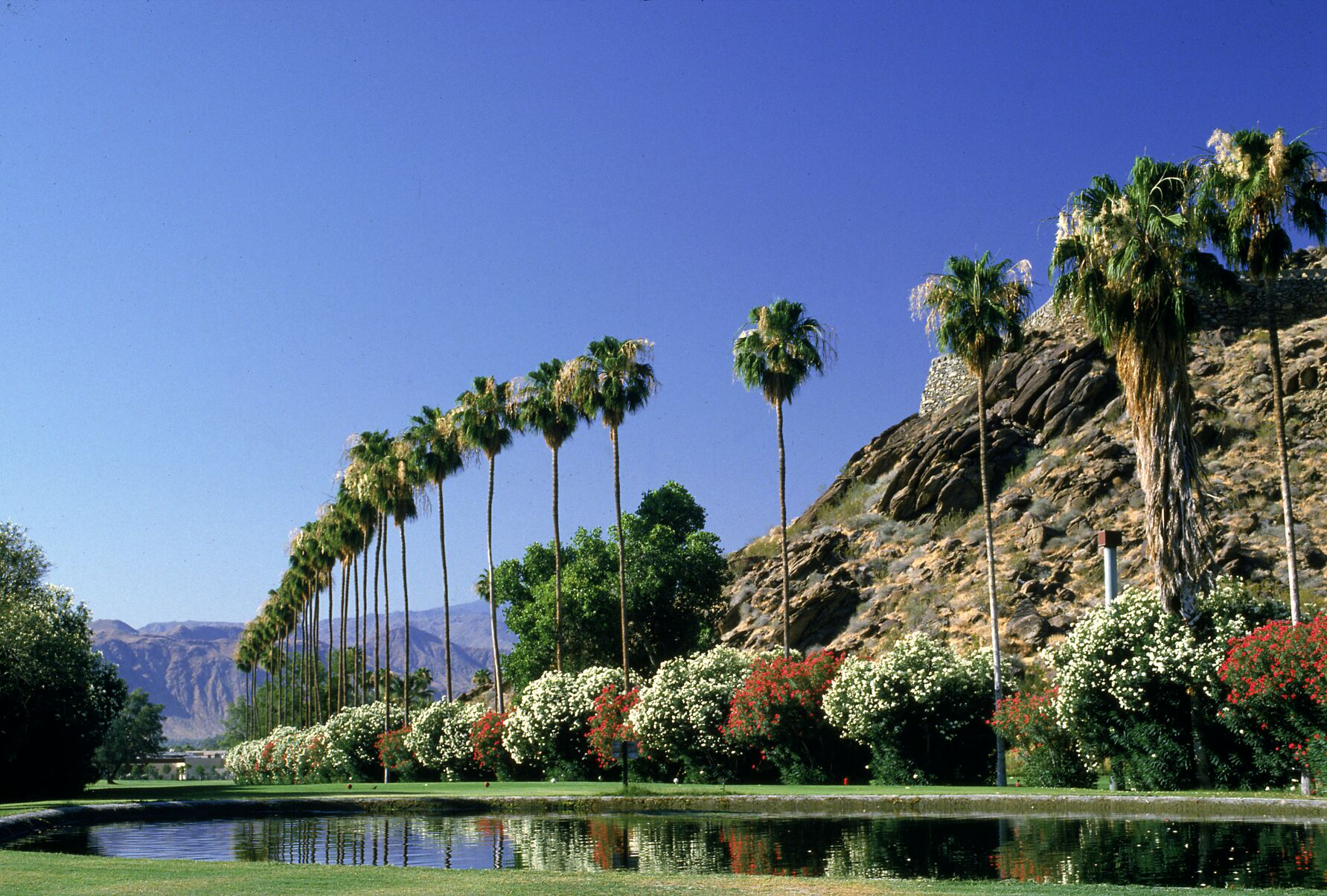 2016 the year of travel golf experiences for Travel to palm springs