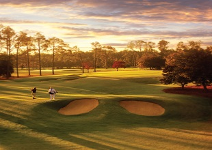 Pinehurst Donald Ross Package