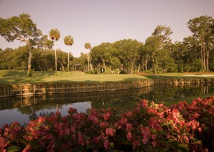 13th Hole, TPC Sawgrass